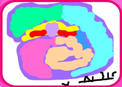 הציור של מיה שיזף 8