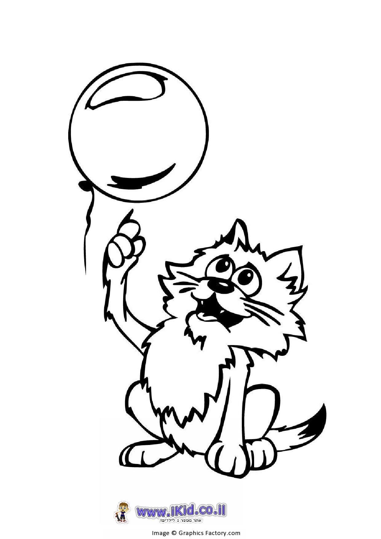 חתול עם בלון