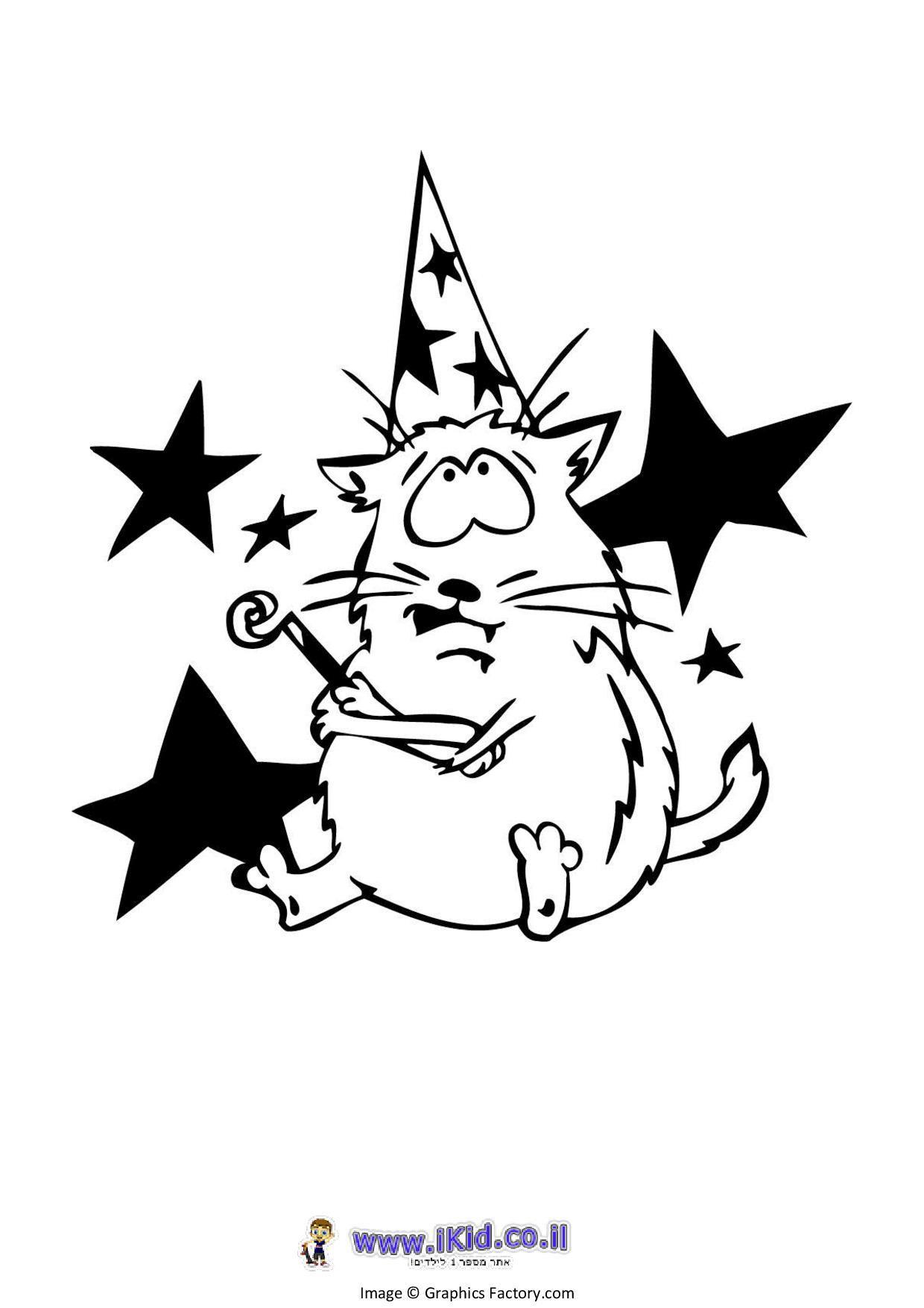 חתול במסיבה