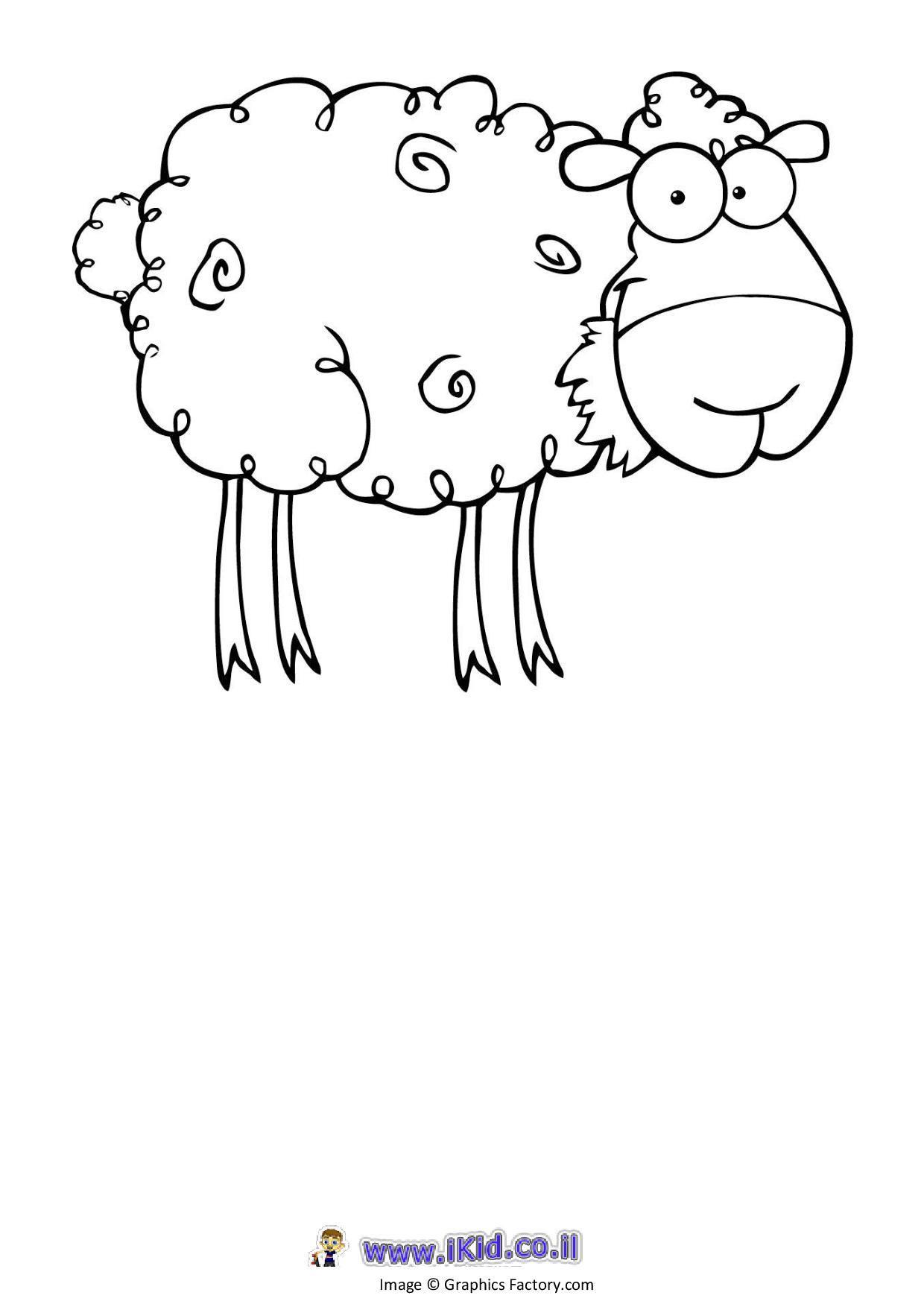 כבשה פרוותית