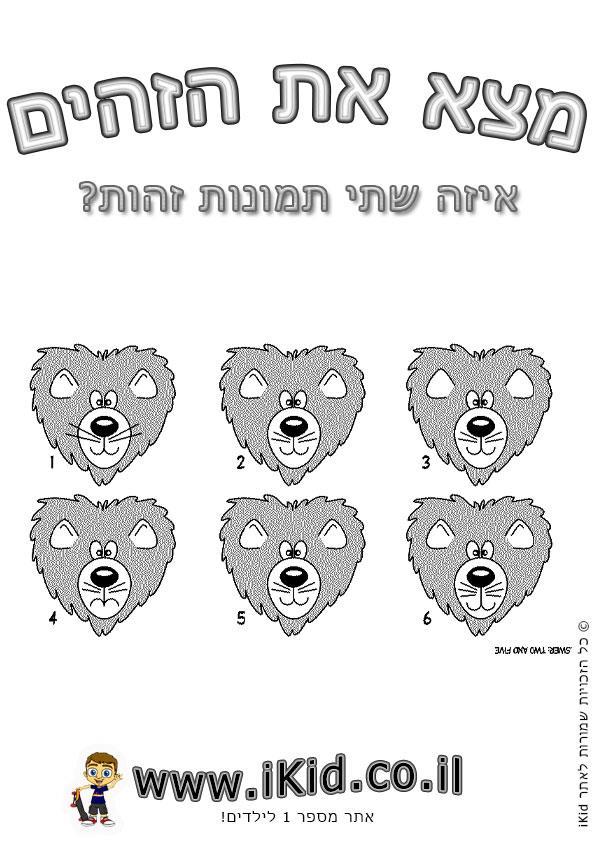 אריות זהים