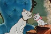 חתולים בצמרת - שיר הסולמות