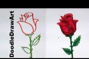 איך מציירים ורד
