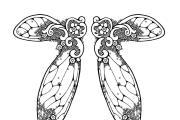כנפיים של פיה 2