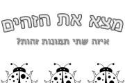 חיפושיות זהות