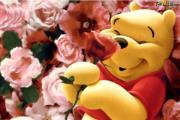 פו הדוב והפרחים