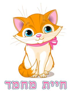 חתול - חיית מחמד