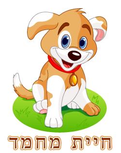כלב - חיית מחמד